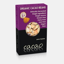 Organic Raw Cacao Beans 100gr